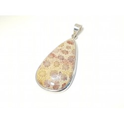 Pendant Fossil coral